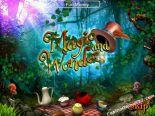 automatenspiele Magic And Wonders SkillOnNet