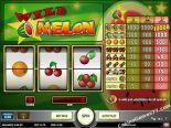 automatenspiele Wild Melon Play'nGo